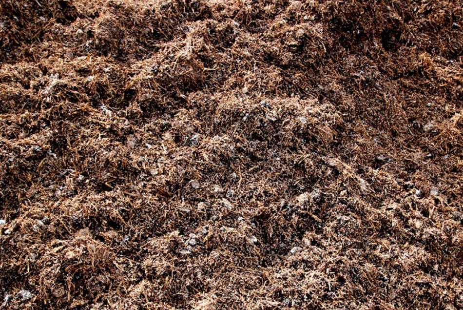 Loam Compost And Garden Soils