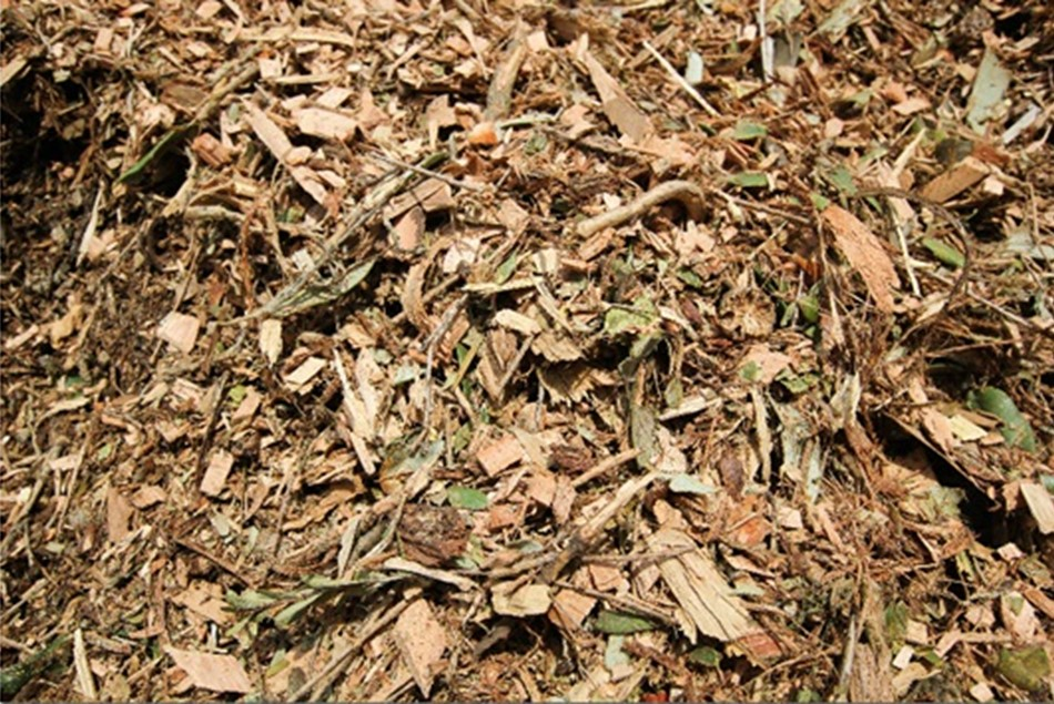 Fresh Cut Mulch Bag